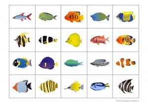 рыбки карточки