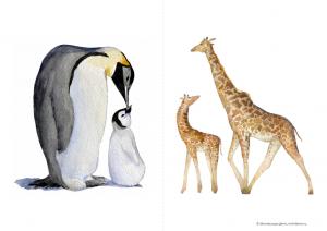 открытки животные