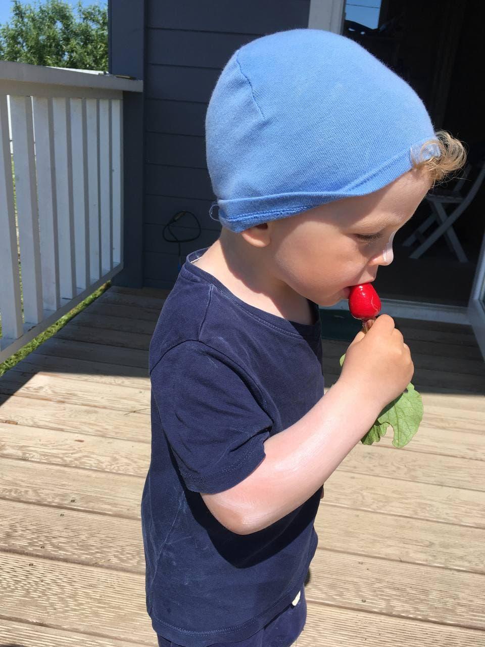 Ребенок пробует редис