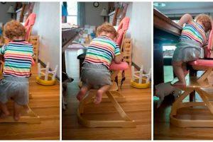Ребёнок залезает на растущий стул